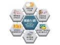 網站設計|網頁設計公司|如何選擇網路行銷公司