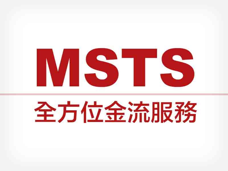 網站設計|網頁設計公司|MSTS全方位金流服務