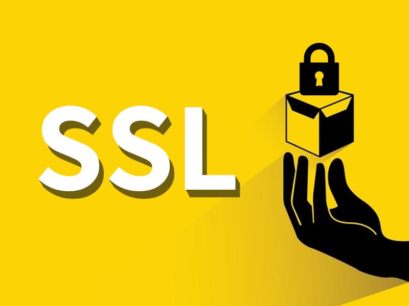 網站設計|網頁設計公司|SSL 數位憑證,到底該使用免費還付費的?